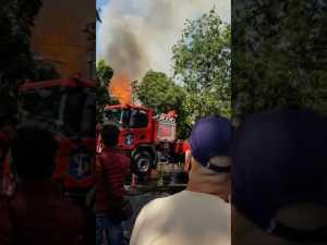 , Api di Pasar Blauran, Beban Berat Masyarakat di Masa Pandemi,